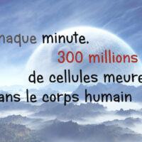 Saviez-vous que…Chaque minute, 300 millions de cellules meurent dans le corps humain
