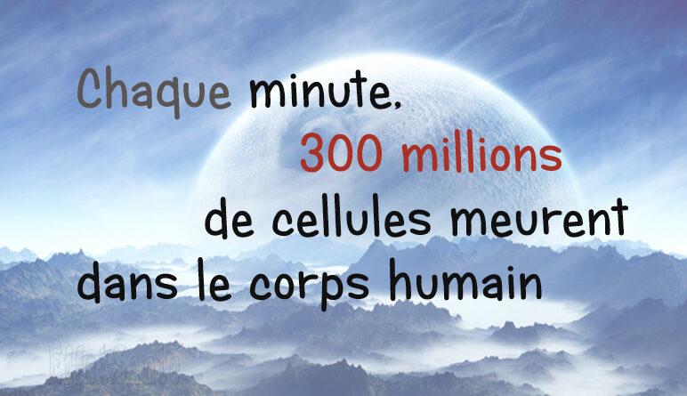 cellule, les cellules meurent, combien de cellules meurent