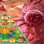 Le régime alimentaire qui réduit de moitié le risque de cancer